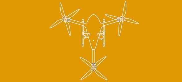 BEAST_DRONE TOP VIEW 3.jpg