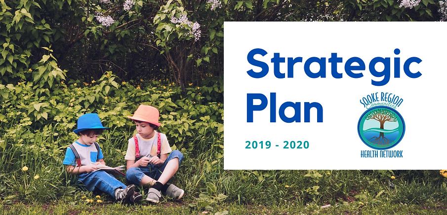 SRCHN Strategic Plan 2019-2022.png
