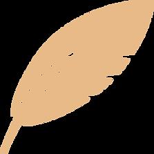 Image de plume