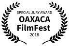 SPECIAL JURY AWARD - OAXACA FilmFest  -
