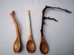 Taxonomía de las cucharas