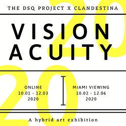 Vision+Acuity.JPG