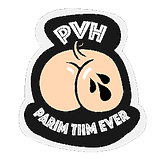 transparent pvh.png