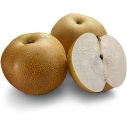 Fresh Brown Nashi Pear each