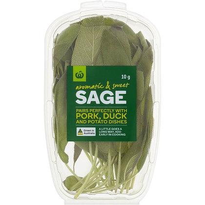 Woolworths Sage Fresh Herb 10g punnet