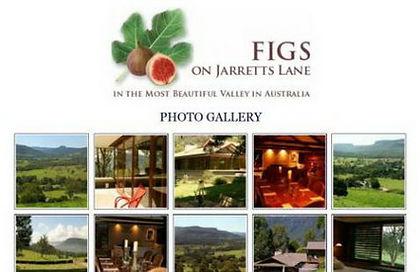 FIGS on Jarretts Lane Kangaroo Valley, NSW