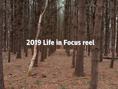 Life in Focus Reel