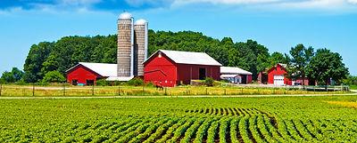Farm Pest Management