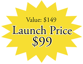SALE $99 sticker Launch Price.png