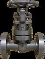 oil & gas globe valve