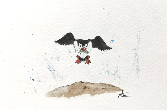 Framed Original Watercolour of a puffin