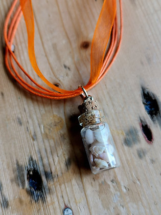 Bottled beach necklace