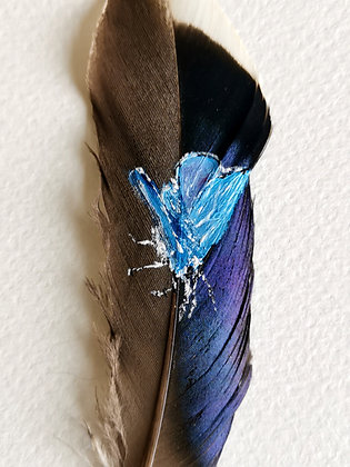 Common blue butterfly painted on a duck feather