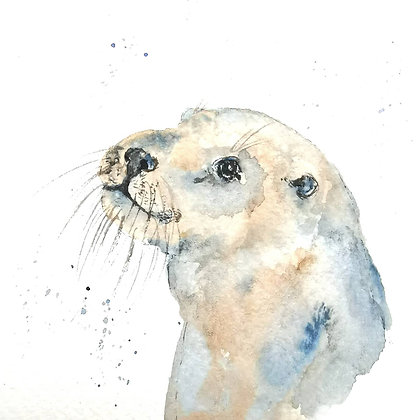 Framed Original Watercolour of an otter