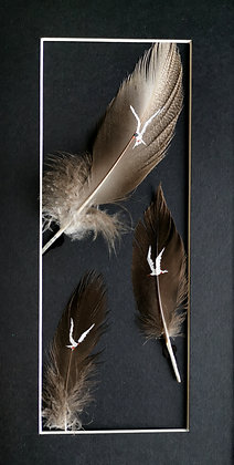 Terns painted on duck and chicken feathers