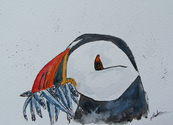 Original watercolour of a puffin