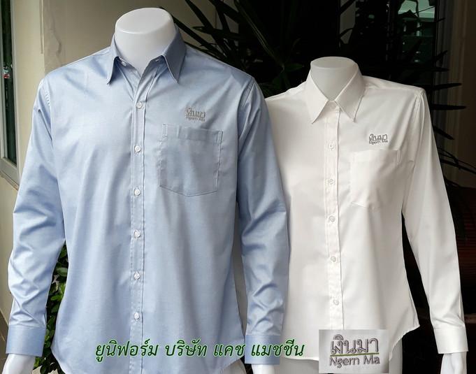 ผ้า Oxford Uniqlo