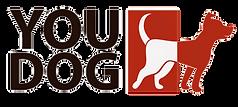 Logo%20fundo%20liso_edited.png