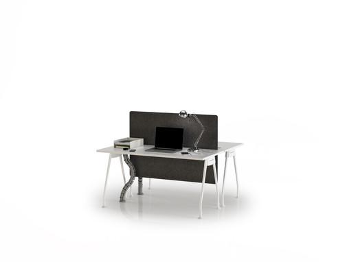 Trigon Series Face-to-Face Workstation