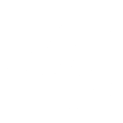 Skull_cup.png