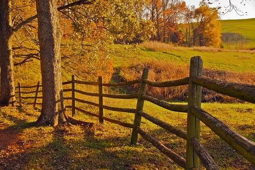 Autumn in Culpeper VA