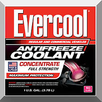 EVERCOOL CONCENTRATE RED.jpg