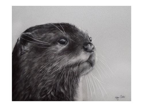 'Otter'Giclée Fine Art Print