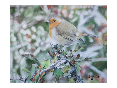 'Robin' Original Artwork