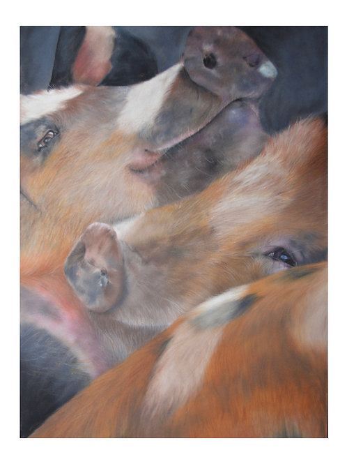 'Three Little Pigs' Giclée Fine Art Print