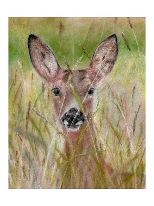 'Doe a Deer'Giclée Fine Art Print