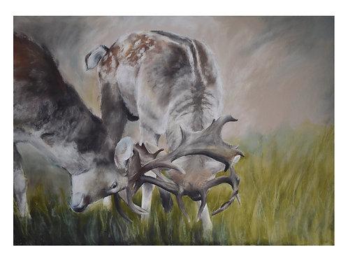'Stuck in a Rut' Giclée Fine Art Print