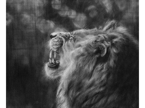 'Pride' Giclée Fine Art Print
