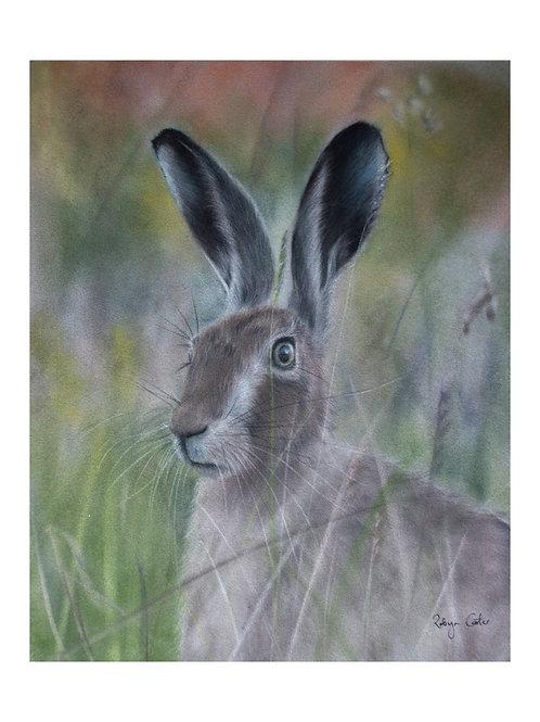 'March Hare'Giclée Fine Art Print