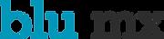 Logo Blu letras.png