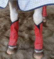 horse fly leggings