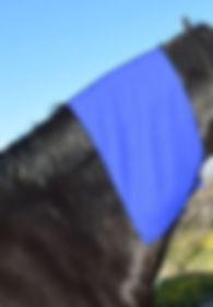 Equine Cooling Towel Neck Wrap.JPG