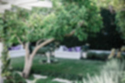 Mosman-10.jpg