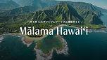 Malama Hawaii 1.jpg