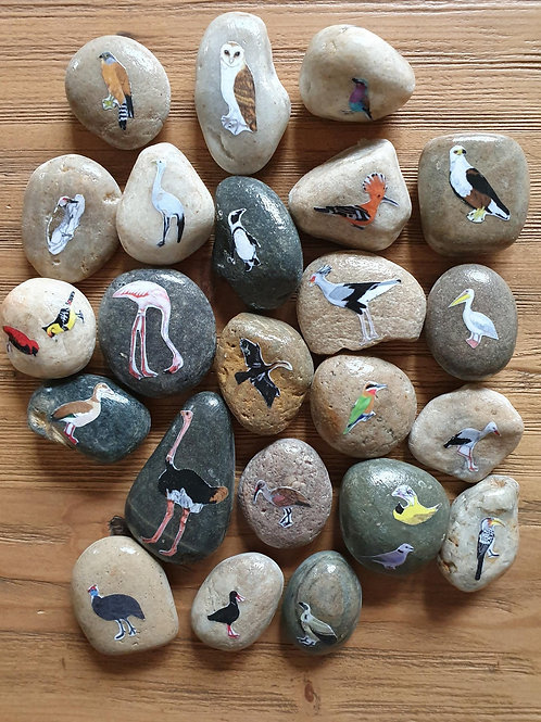 Story Stones - South African Birds (23pc)