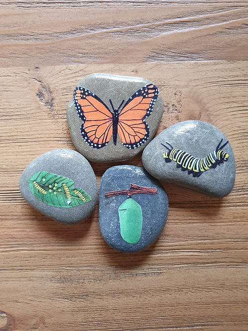 Story Stones - Life Cycle Butterfly