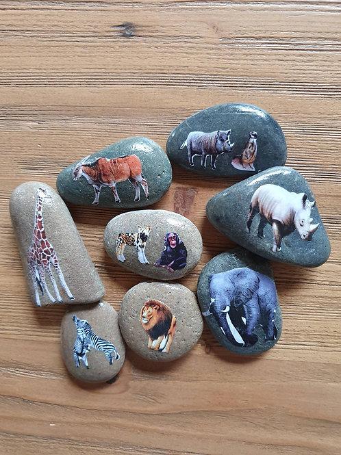 Story Stones - Savannah Animals (8pc)