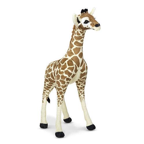Baby Giraffe - Plush