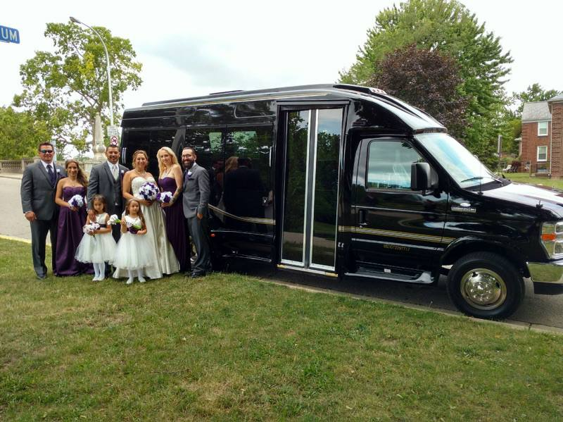 Wedding party with limousine