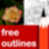 FreeOutlines688.PNG