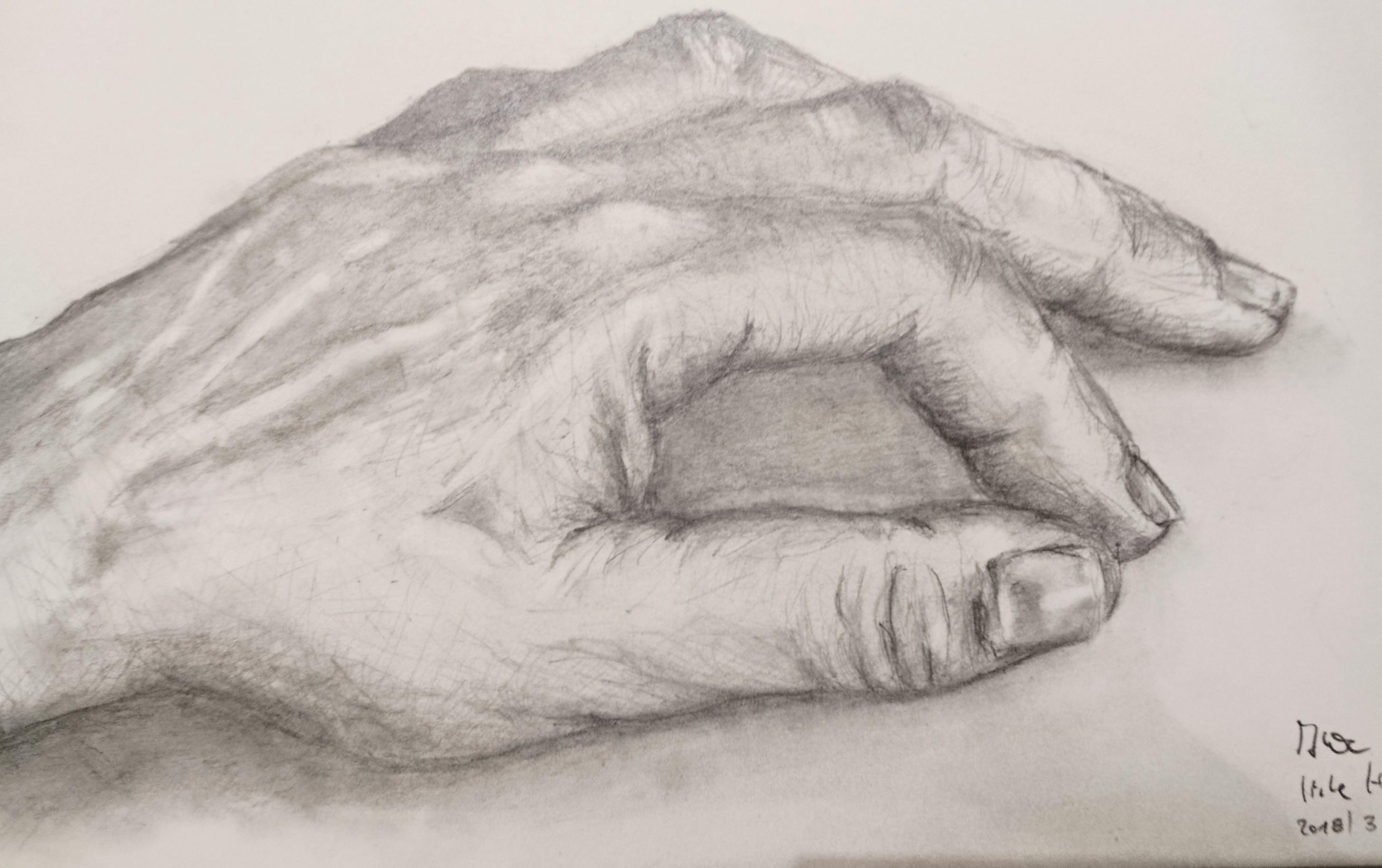 Handstudie, Graphit A6, März 2018