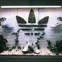 Adidas Visual Display