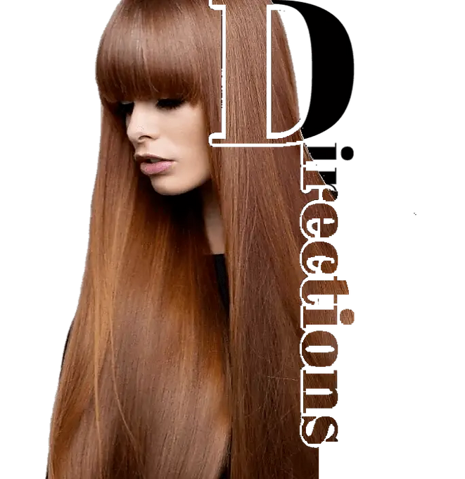 Long straight brunette showig directions to Style by Louis