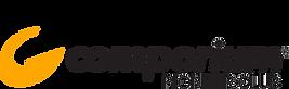 Comporium Logo Pioneer Club.png
