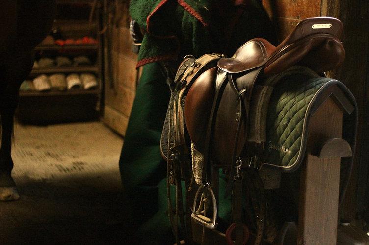 saddle.jpeg