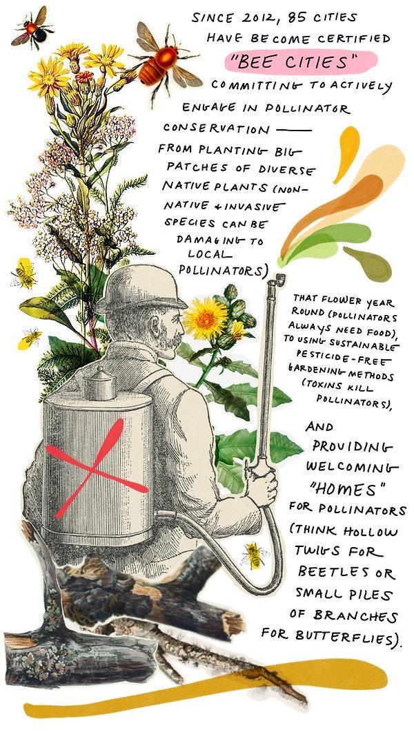 Pollinators-7.jpg
